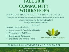 Madame Green presents Fall Community Workshop BALL of Infusions (DC) November 4 2018