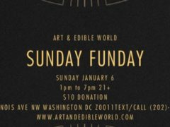 ART & EDIBLE WORLD SUNDAY FUNDAY (DC) January 6 2019