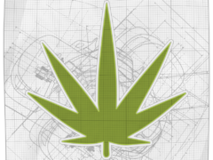 Ready for a Cannabis job in DC?