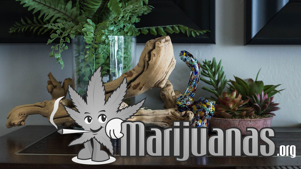 The PufferBox Indestructible March 2019 Monthly Cannabis Box ... on modern plant box, house tissue box, winter plant box,