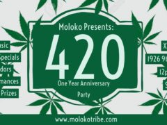 420 One Year Anniversary Party Hosted by Moloko (DC) April 20 2019
