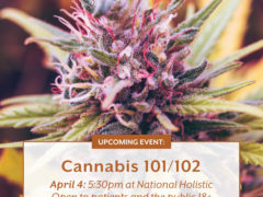 Cannabis 101 and Cannabis 102 National Holistic Healing Center (DC) April 4 2019