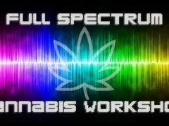 Full Spectrum Cannabis Workshop Cambridge MD Hosted by Elevated Events Group (MD) May 4 2019