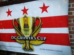 5th Annual DC Grower's Cup Hosted by Capitol City Seed (DC) May 25 2019