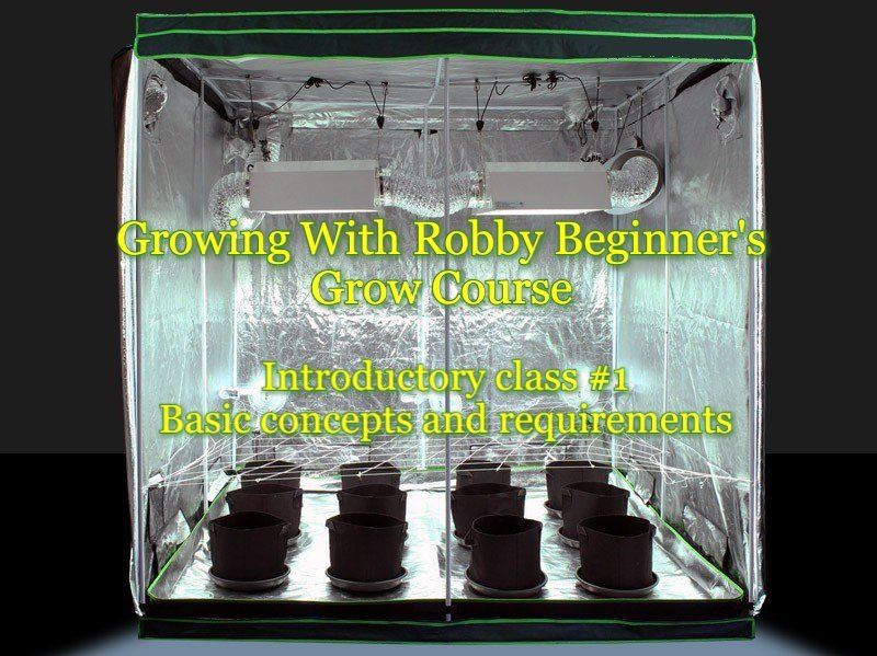 Growing with Robby Basic Concepts Hosted by Capital City Hydroponics (DC) May 26 2019