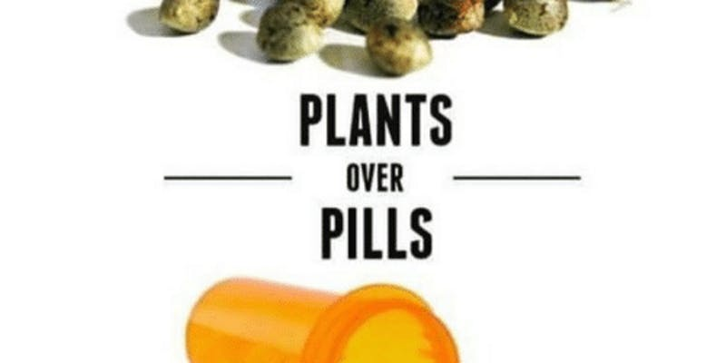 Plants Over Pills Veterans Rally by Gifts From The Earth (DC) May 25 2019