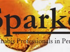 Spark's 710 Celebration at Union Collective (MD) July 10 2019