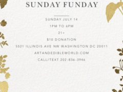 Art & Edible World Sunday Funday (DC) July 14 2019