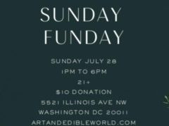 Art & Edible World Sunday Funday (DC) July 28 2019