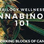 Cannabinoids 101 August Workshop by Trilogy Wellness of Maryland (MD) August 23 2019
