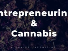 Entrepreneuring x Cannabis by DAVINE EXPEDITIONS (DC) August 29 2019