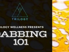 Dabbing 101 September Workshop by Trilogy Wellness of Maryland (MD) September 27 2019
