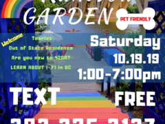 420 Rainbow Garden (DC) October 19 2019