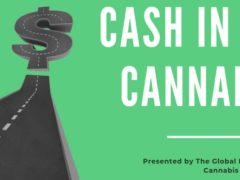 "THE ""CASH IN ON CANNABIS"" EXPERIENCE (MD) December 7 2019"