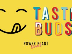 TasteBuds A Snack Food & C B D Festival (MD) November 3 2019