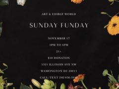 Art & Edible World Sunday Funday (DC) November 17 2019