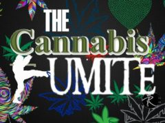 The Cannabis Kumite - 1st Annual East Coast Competition 2019 (DC) November 6 2019