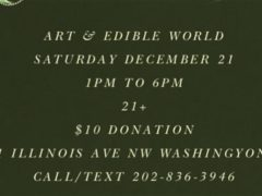 Art & Edible World Saturday (DC) December 21 2019