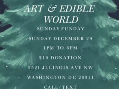 Art & Edible World Sunday (DC) December 29 2019