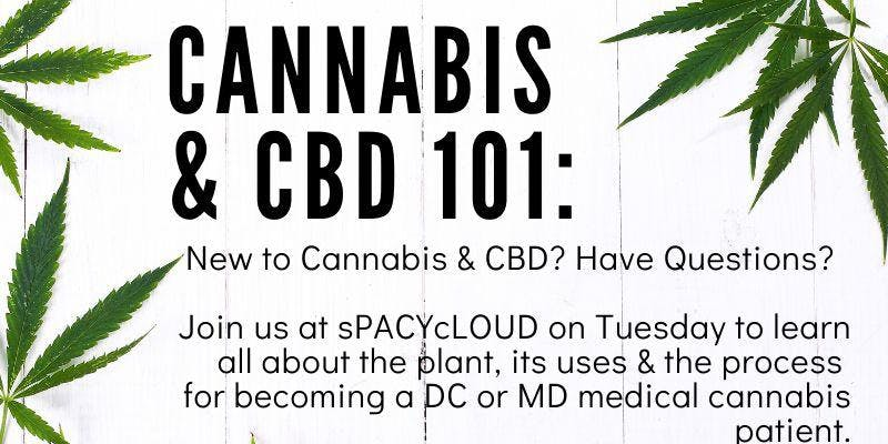 Cannabis and CBD 101 by Spacycloud