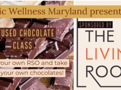 Infused Chocolate Making Class by Holistic Wellness Events (MD) January 25 2020