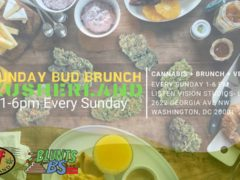 Sunday Bud Brunch Hosted by Listen Vision Recording Studios and Kief Kusherland (DC) Sundays