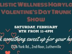 Valentine's Day Trunk Show Hosted by Holistic Wellness (MD) February 8 2020