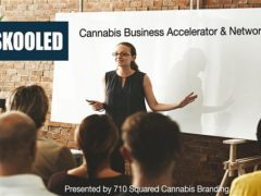 Cannabis Business Accelerator & Networking by 710 Squared Cannabis Branding (MD) January 20 2020