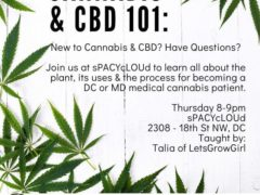 Cannabis & CBD 101 Hosted by Spacylounge DC (DC) Thursdays