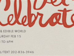 Art & Edible World Saturday (DC) February 15 2020