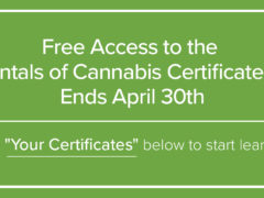 Free Fundamentals Cannabis Certificate Program training (online) Ends April 30