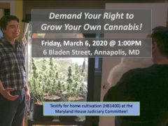 Home Grow in Maryland! Hosted by Maryland NORML (MD) March 6 2020