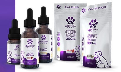 BOGO Sale on CBD Pet Products
