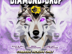 Blissful Budz Diamond Drop Weekend (DC) July 25 27 2020