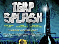 Blissful Budz Terp Splash (DC) July 171820 2020