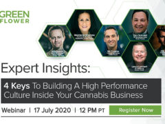 Building A High Performance Culture Inside Your Cannabis Business (online) July 17 2020