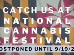 Crabcakes & Cannabis at National Cannabis Festival (DC) September 19 2020