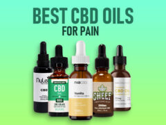 5 Interesting Facts You Never Knew About CBD Oil