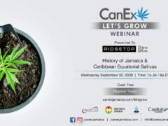 CanEx Jamaica Let's Grow Cultivation Webinar (online) September 30 2020