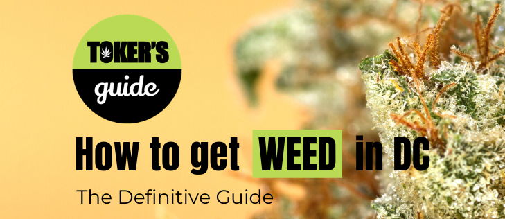 Toker's Guide Releases its Definitive Guide to Finding Weed in D.C.