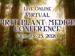 Spirit Plant Medicine Conference (online) October 23 24 25 2020