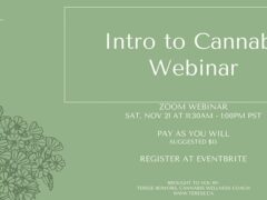 Intro to Cannabis by Terese Cannabis Wellness Coach (online) November 21 2020