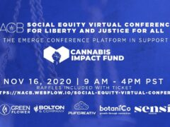 Social Equity Virtual Conference by Minorities 4 Medical Marijuana (online) November 16 2020