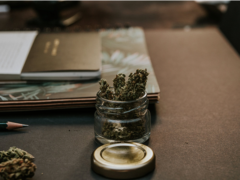 The Entourage Effect Why You Should Mix Cannabinoids